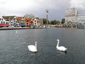 stavanger harbour.jpg
