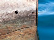 Shipwreck Gargantua