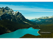 Lake Peyto, Banff National Park