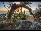 Sunset at Lighthouse Park in West Vancouver