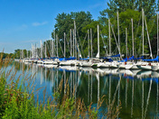 Toronto Island Park with Island Marina with Sailboats Reflecting off of a Water