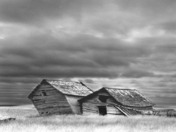 Leaning Barns