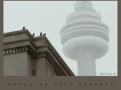 watching over Toronto/surveillant Toronto