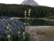 Crowsnest Mountain looking into Chinook Lake
