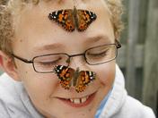 David + butterflies.jpg