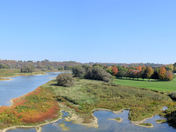Maitland River and Golf course.jpg