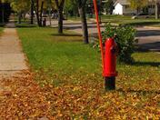 Fire hydrant fall scene
