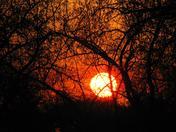 Sunset fireball