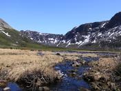 Gros Morne Stream