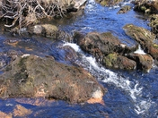 Gros Morne Stream on the water