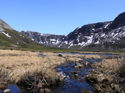Gros Morne Stream