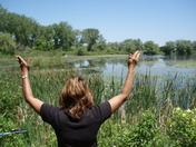 Toronto Island Marsh