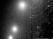 Winter Night Black Cat/Hespeler Ont.