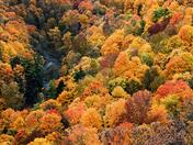 Spencer Creek Gorge Dundas On.
