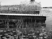 Dock # 3