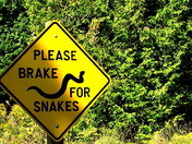 "Give snakes a ""brake"""