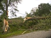 tornado damage9.jpg