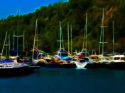 harbor yachts 3.jpg