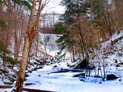 Webster's Falls winter version