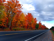 Fall colors along the side of Hwy 35