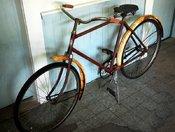 J. C. Higgins Bike