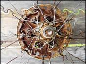 Wacky  Wheel wb.jpg