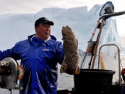 Fishing off Greenland
