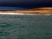 Shore Landing by Zodiac