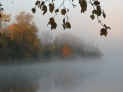 Morning Fog in the Fall