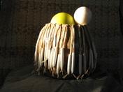 Navajo Gourd