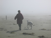 Walking in the fog on Long Beach, Pacific Rim