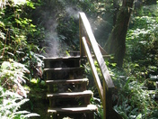 Steam on Steps