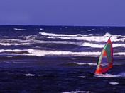 Windsurfing off P.E.I.