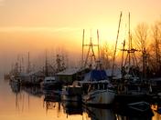 Marina in Fog, Ladner B.C. LK