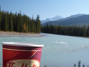 a cup in the mountains