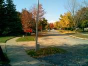 Mississauga_Fall01