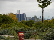 View of detroit skyline