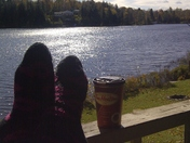 Timmies lakeside