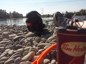 Timmies by the Bow.