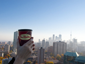 Tim Skyline Hortons
