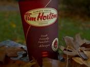 Fall Time With Tim's