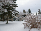 winter in sherwood park alberta