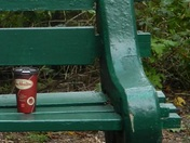 Tims on a Bench