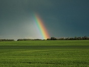 Rainbow after the storm -