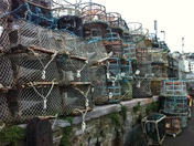 Lobster Pot Wall