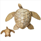Bioldegradable Sea Turtle