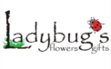 Ladybugs Flowers and Gifts
