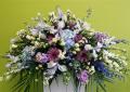 Dietz Falls Florist