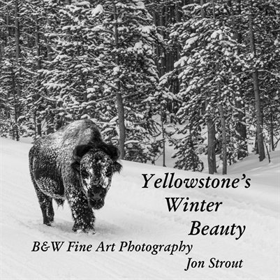 Yellowstone's Winter Beauty