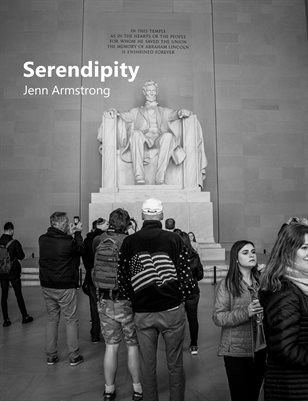 Serendipity: Washington D.C. Vol 1